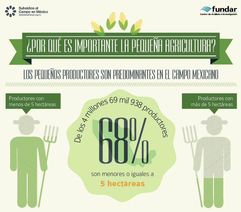 Infografía: ¿Porque es importante la pequeña Agricultura?