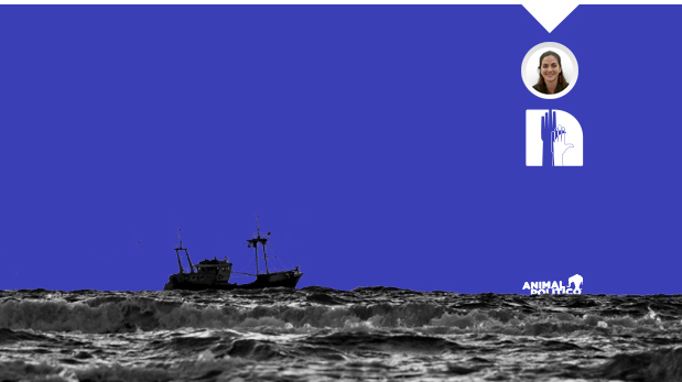 Ciudadanos contra la sobreexplotación pesquera
